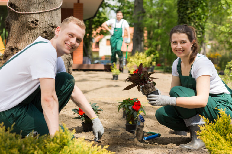 Gartenpflege & Grünanlagenpflege in Düsseldorf